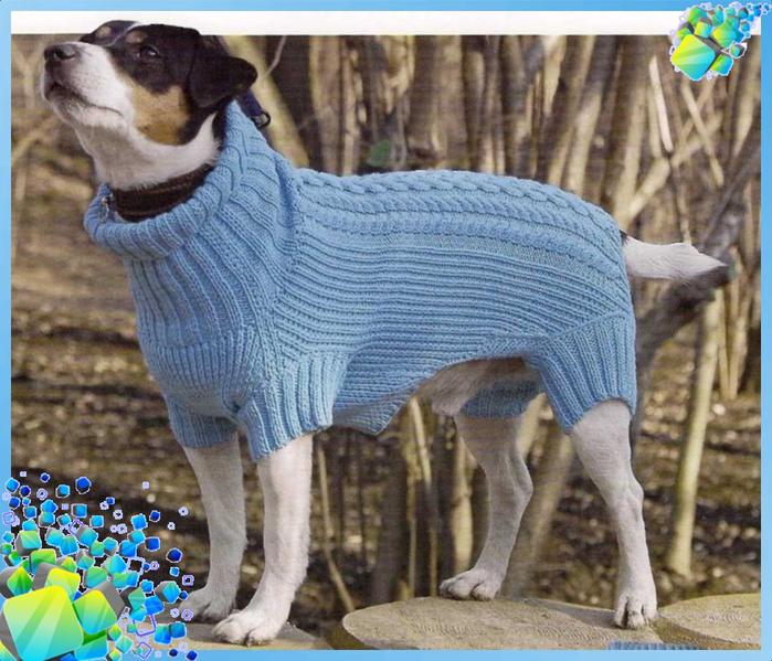 Одежда для собачек вязать