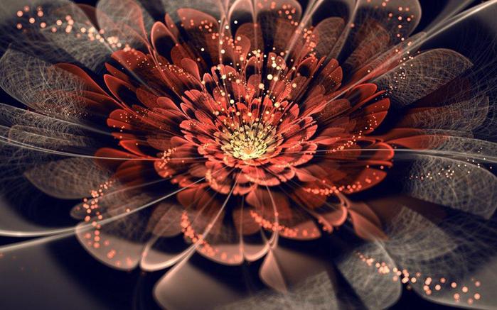 фрактальные цветы картинки Сильвия Кордедда 2 (700x437, 341Kb)