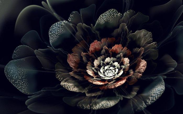 фрактальные цветы картинки Сильвия Кордедда 4 (700x437, 220Kb)