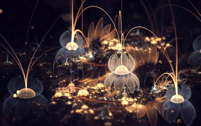 фрактальные цветы картинки Сильвия Кордедда 6 (700x437, 254Kb)