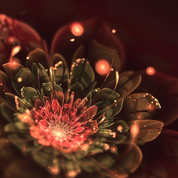 фрактальные цветы картинки Сильвия Кордедда 10 (600x600, 232Kb)