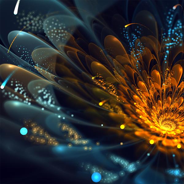 фрактальные цветы картинки Сильвия Кордедда 12 (600x600, 320Kb)