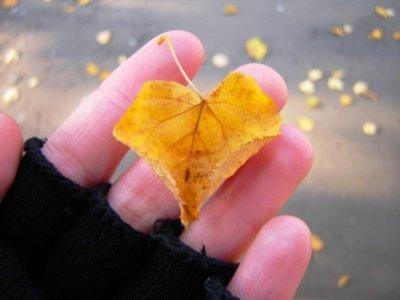 любовь осень (400x300, 17Kb)
