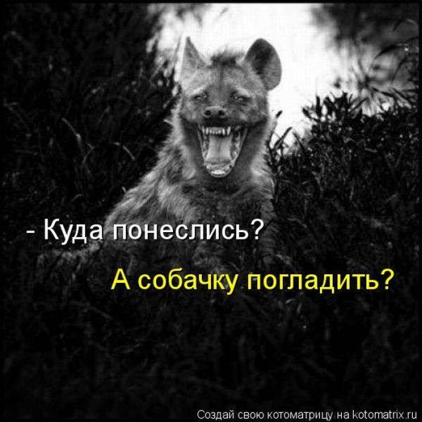 kotomatrix_01 (600x600, 50Kb)