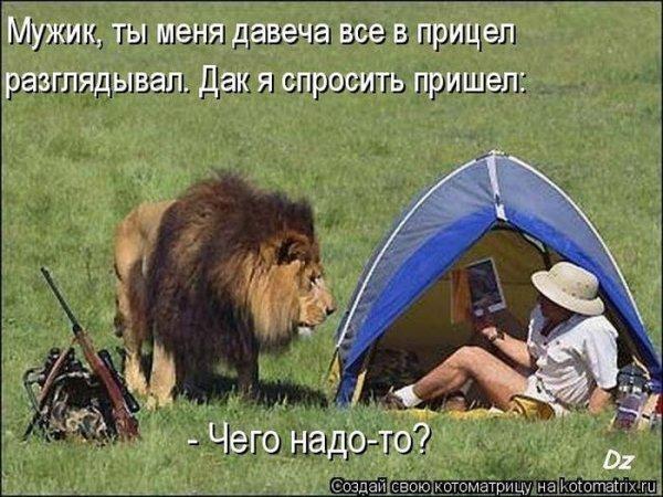 1308903160_kotomatrix_20 (600x450, 73Kb)