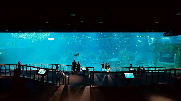 самый большой аквариум.jpg1 (620x348, 64Kb)