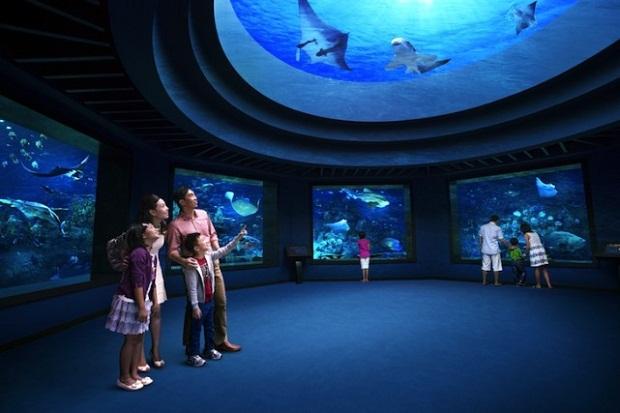 самый большой аквариум.jpg3 (620x413, 72Kb)