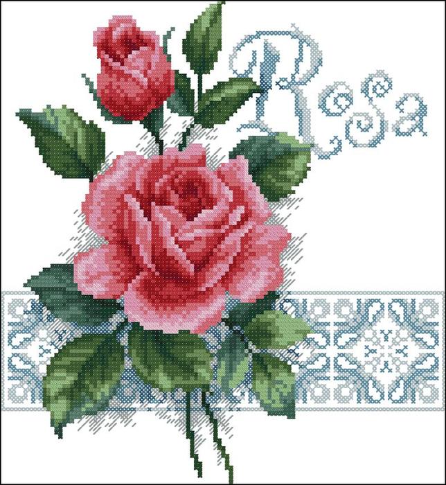 ROSA (644x700, 423Kb)