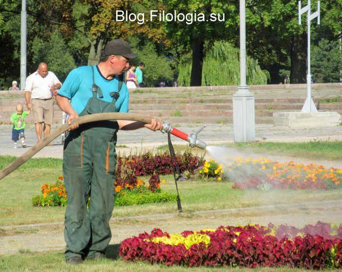Рабочий поливает из шланга цветы в парке Дружба в Москве  (700x557, 95Kb)