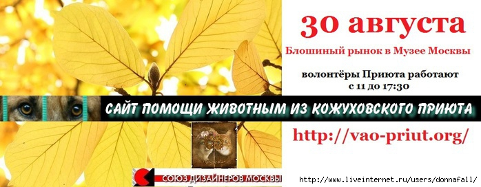 3363851_30_avg (700x272, 145Kb)
