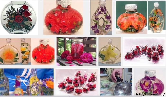 как сохранить цветы при помощи глицерина, как законсервировать цветы в глицерине,/1440944429_Bezuymyannuyy (700x411, 259Kb)