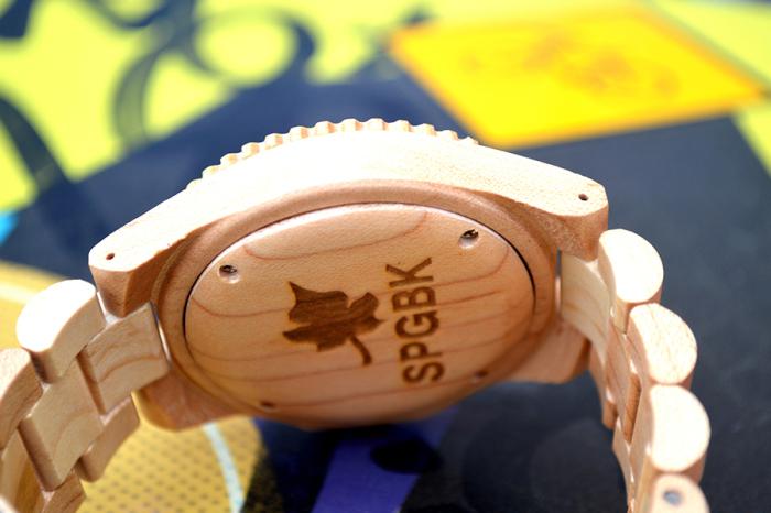 SPGBK-01 (700x466, 383Kb)