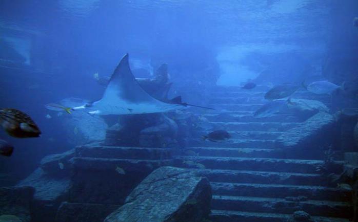 Неразгаданные тайны Бермудского треугольника