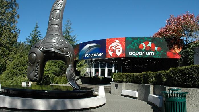 Vancouver-Aquarium-22003 (700x393, 97Kb)