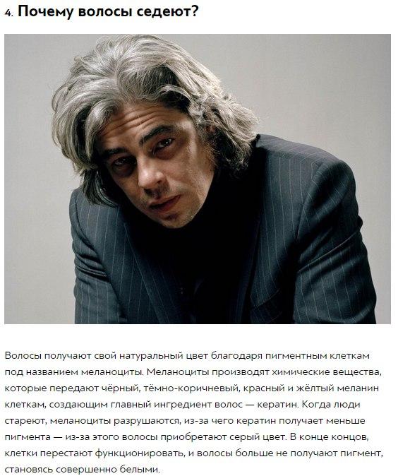 http://img0.liveinternet.ru/images/attach/c/7/124/809/124809150_10_otvetov_na_strannuye_voprosuy_kotoruymi_hot_raz_zadavalsya_kazhduyy4.jpg
