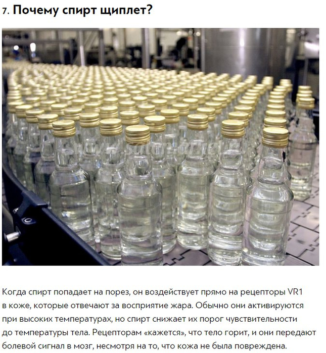 http://img0.liveinternet.ru/images/attach/c/7/124/809/124809154_10_otvetov_na_strannuye_voprosuy_kotoruymi_hot_raz_zadavalsya_kazhduyy7.jpg