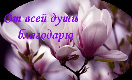 103014711_0_9dbe6_7033238e_L (456x277, 389Kb)