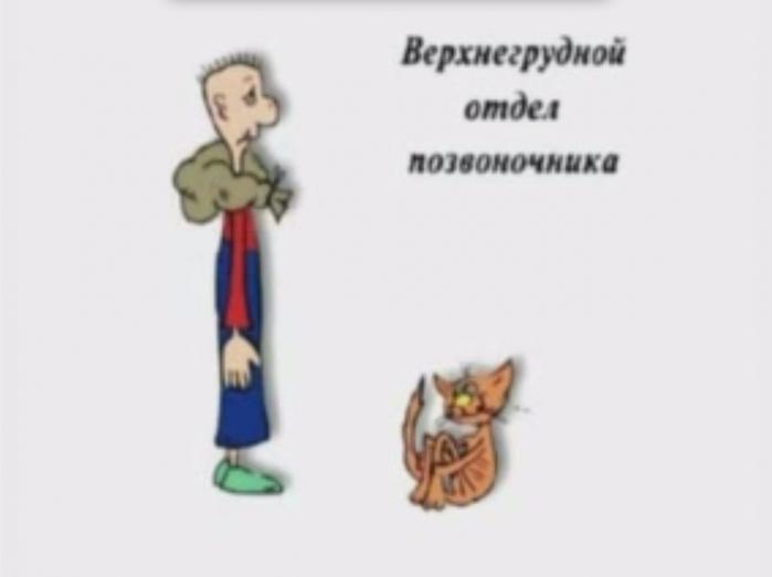 Гимнастика./2045074_ (700x522, 91Kb)