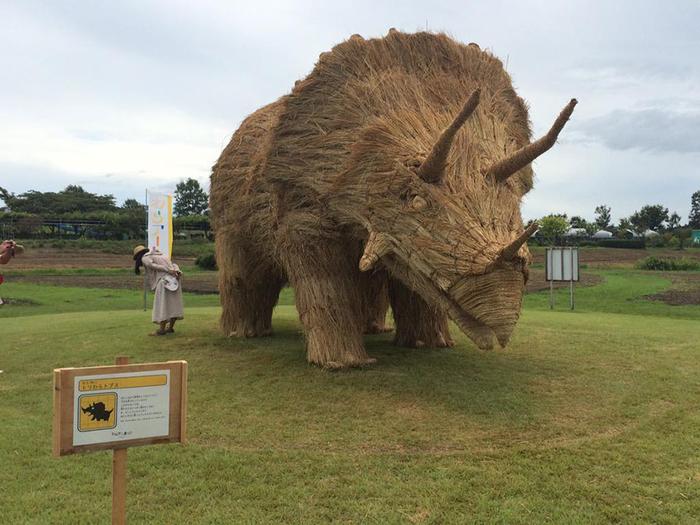 фестиваль соломенных скульптур в японии фото 5 (700x525, 358Kb)