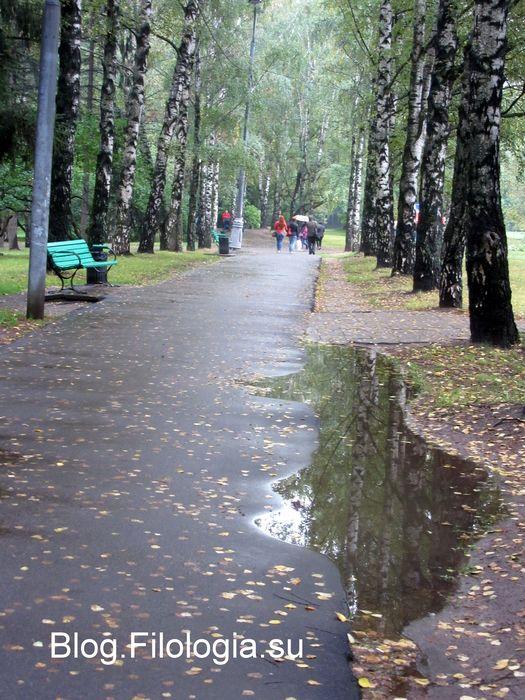 Осенняя аллея в парке Дружба на Речном (525x700, 95Kb)