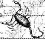 skorpion (152x136, 7Kb)