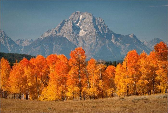 beautiful_fall_in_photos_640_18 (700x471, 86Kb)