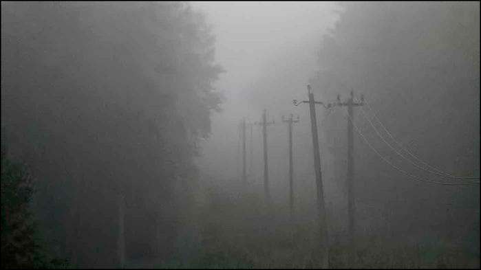 Туманное утро/3673959_3 (700x393, 32Kb)