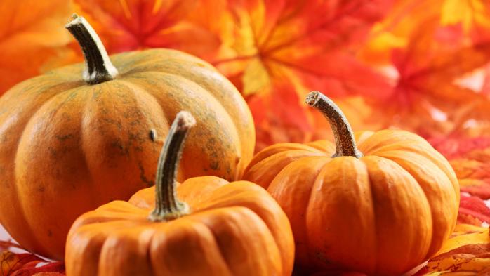 osen-listva-tykva-autumn (700x393, 296Kb)