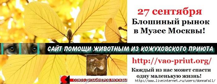 3363851_27_sent (700x272, 154Kb)