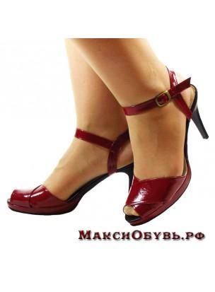 3925311_obyv_bolshogo_razmera (304x413, 18Kb)