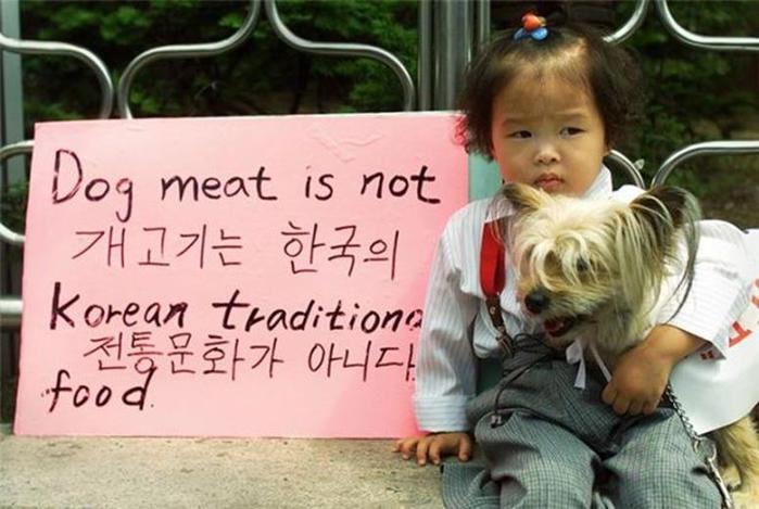 Собаки— не еда?