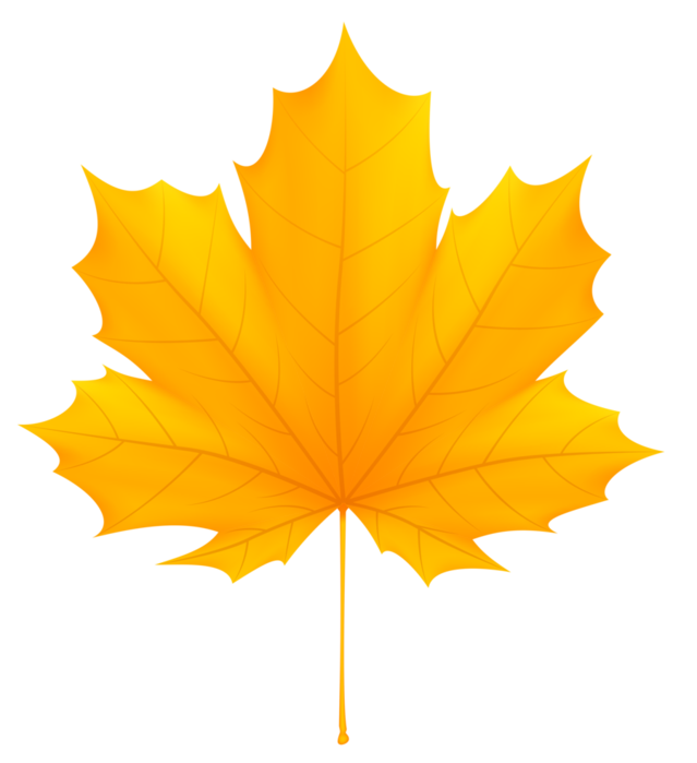 Осенние листья png