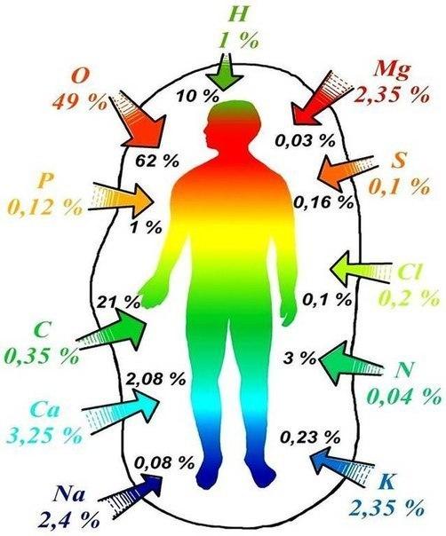 человек таблица Менделеева (502x604, 57Kb)