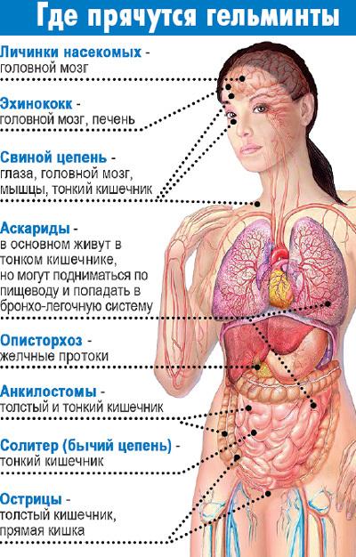 лекарство паразитов нано антитоксин