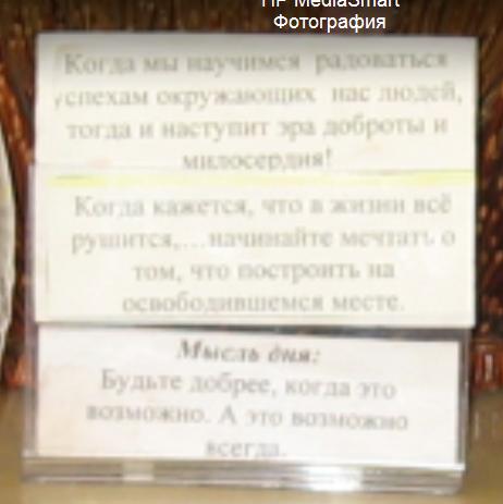 seks-volosataya-kiska-vid-snizu