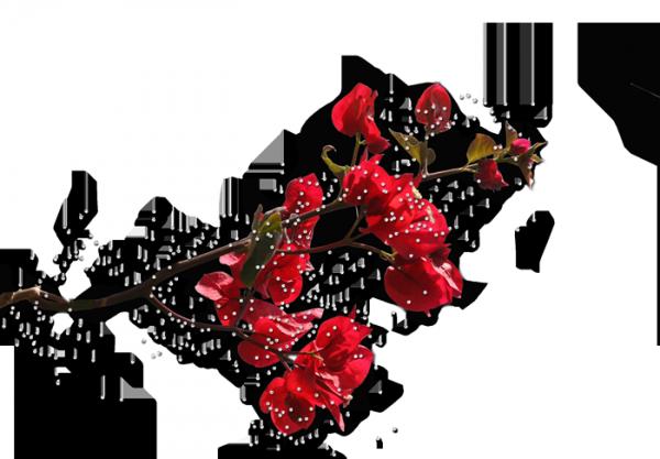 1553 (600x417, 239Kb)