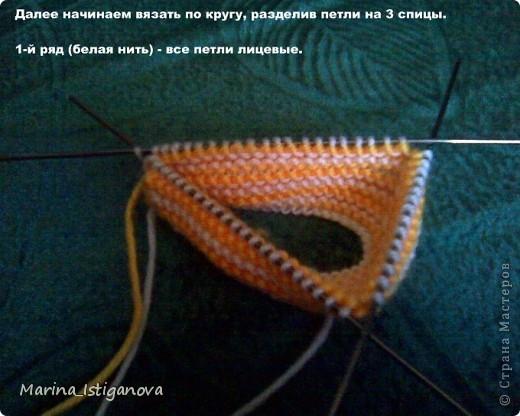 ris.3 (520x416, 61Kb)