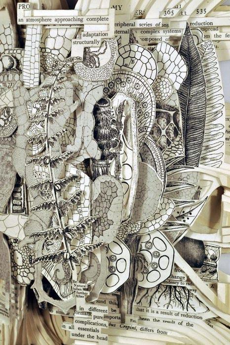 бук-карвинг фото Брайан Деттмер 12 (466x700, 129Kb)