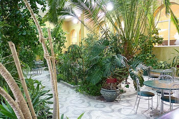 conservatory007 (700x467, 181Kb)