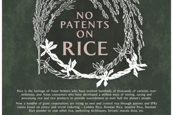 570x379-images-stories2-478-seed_freedom-No_Patens_of_RICE-Poster-640x426 (1) (570x379, 48Kb)