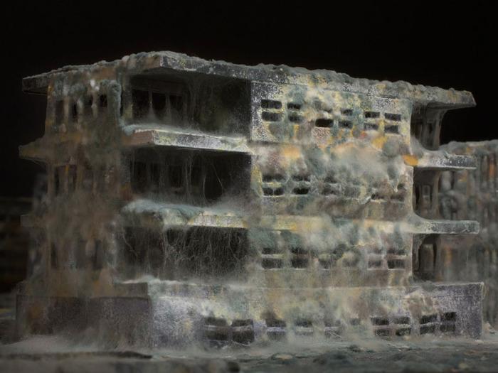 постапокалиптические города Даниэль Дель Неро фото 3 (700x525, 99Kb)