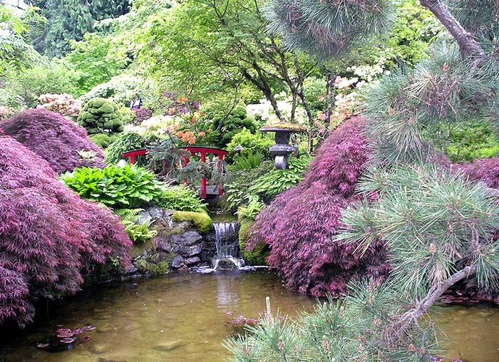японский сад1 (700x508, 180Kb)