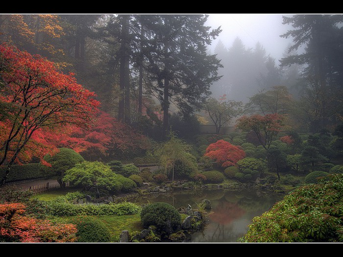 японский сад2 (700x525, 133Kb)