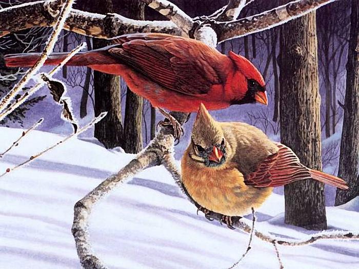 posterlux-ohota_ribalka_jivotnie-winters_pair (700x525, 324Kb)