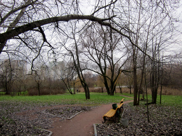 18 Чернотроп Лирическое место (700x525, 204Kb)