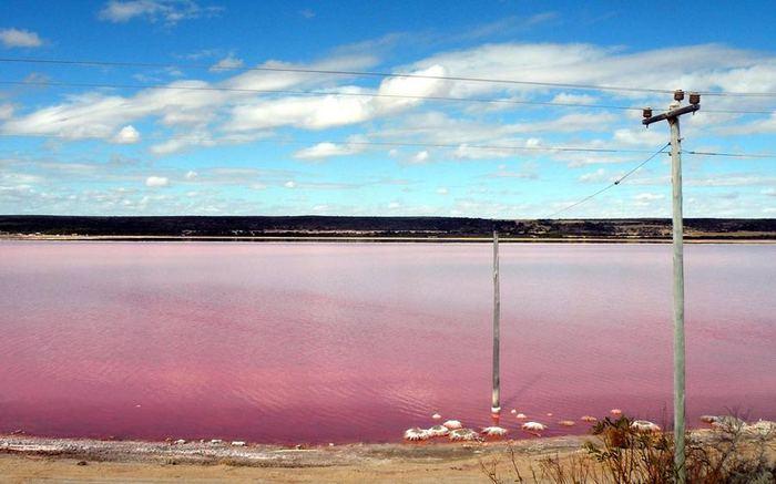 розовое озеро ретба в сенегале 5 (700x437, 45Kb)