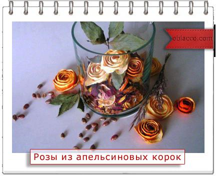 3518263_rozi (434x352, 225Kb)