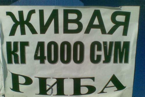 1293965455_02092009002 (500x335, 26Kb)