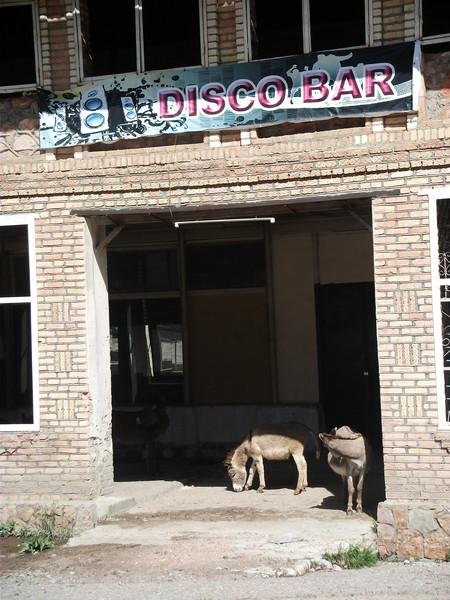 диско бар (450x600, 98Kb)