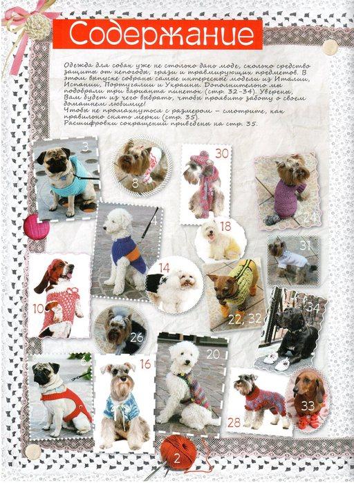 Журналы вяжем собаки